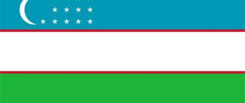 中国产品如何在乌兹别克斯坦精准定位?
